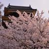 上田城跡の朝