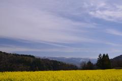 北信濃の春②