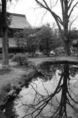 仏宿し広隆寺