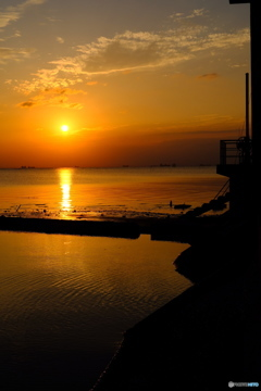 卓海岸の夕景