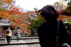 そーだ!京都へ行こう!