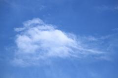 悟空さんが乗ってるような今朝の雲