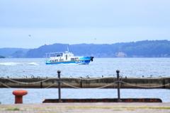 七尾湾めぐり観光船