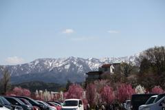 花の森入口駐車場より望む山や花