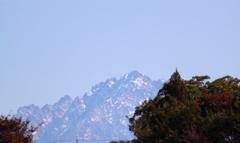 植物園より眺める立山連峰 剱岳