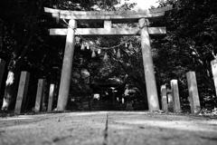 『 鳥居に神聖な感覚を感じるのは日本人だけか? 』