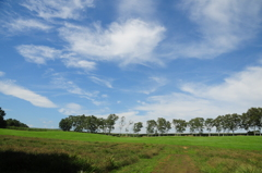 風景写真 1