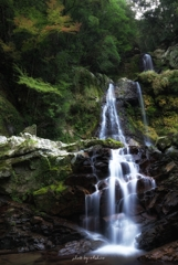 中津谷の滝