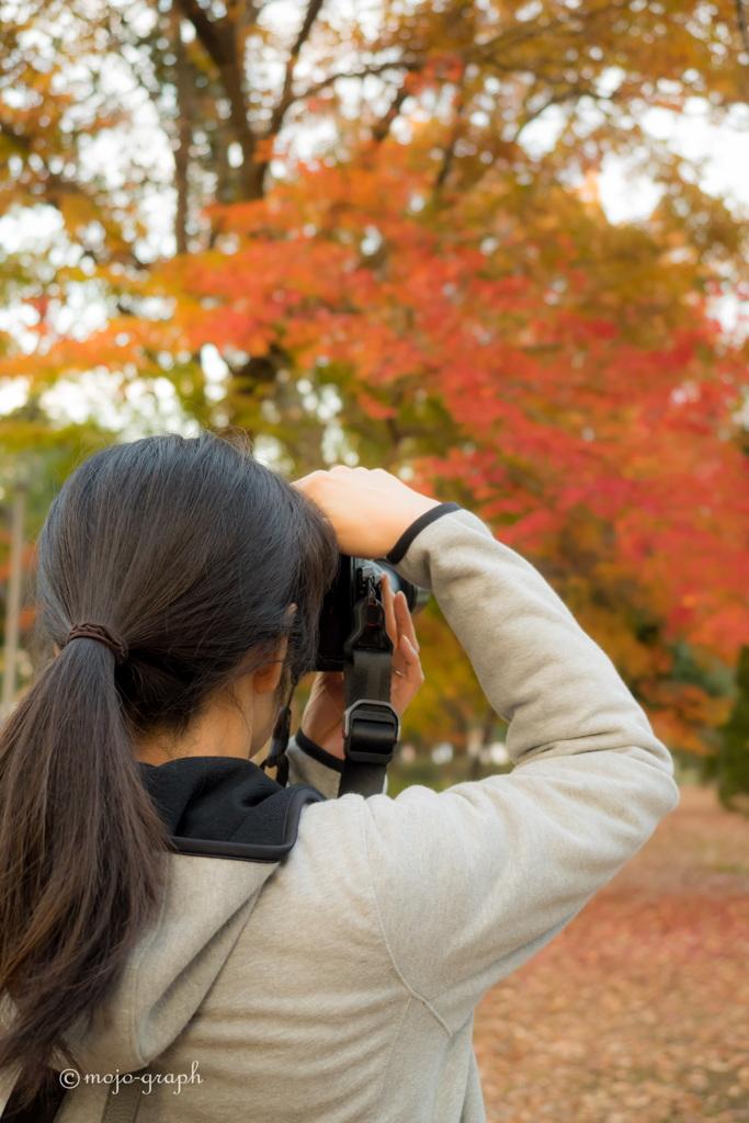 紅葉を撮ろう