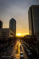 Sunset Yokohama