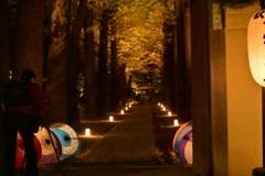 太田黒公園ライトアップ