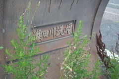 IMG_1287 瀬田川洗堰その5