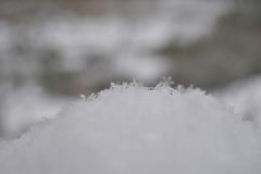 P1030073 雪の結晶その1