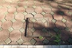 P1020791 八ツ面山公園展望台下