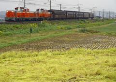 昭和の列車