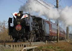 蒸気機関車『初詣』号
