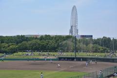 高校野球と大阪ホイール♪