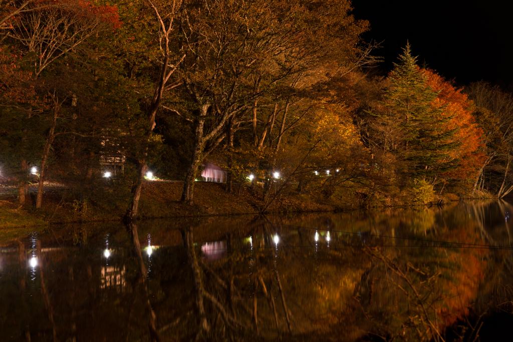 茶臼山高原の紅葉3