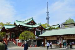 スカイツリーと亀戸天神社