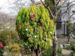 都市緑化植物園のお飾り