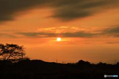 朝陽で染まり