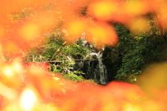 秋の向こうは
