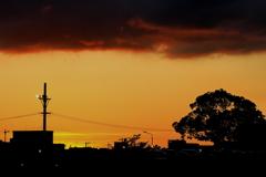 夕焼けを包む雲