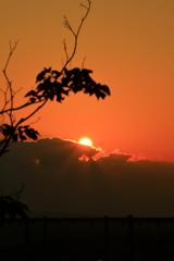 初夏の夕陽