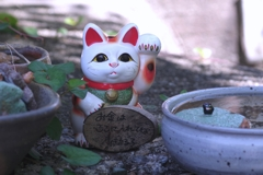 招き猫の路 @ 常滑やきもの遊歩道