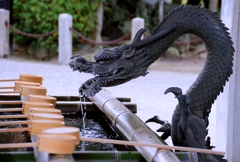 知立神社の龍