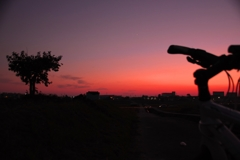 夕暮れサイクリング @西井筋サイクリングロード