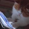 iPadは、おもしろいにゃ~