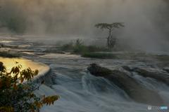 川霧への思い
