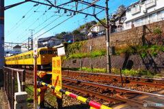 蜜柑色の電車が走る風景