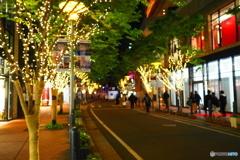 on the street corner