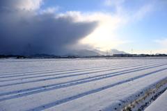 雪景色②。