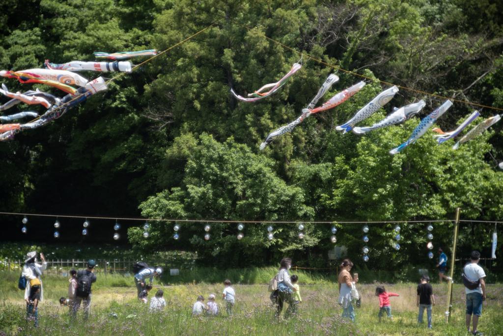 日本の日常 夏のはじまり