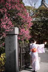 日本の日常 やんわり