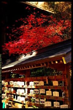 秋の榛名神社にて⑫