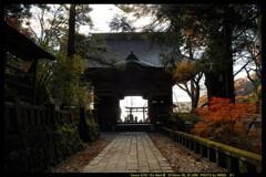 秋の榛名神社にて⑲