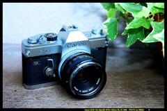 ひんでコレクション Canon FTb②