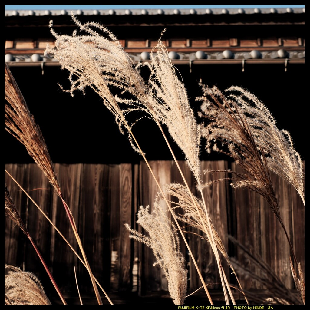 昭和の風を前橋郊外で③