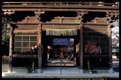 お散歩で日輪寺④