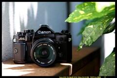 ひんでコレクション Canon A-1 ①