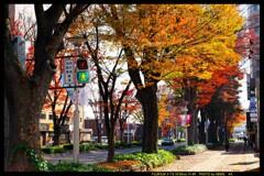 前橋駅前散策と紅葉と④