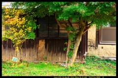 秋の六合村赤岩集落にて㉔