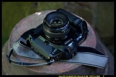 ひんでコレクション Canon EOS-1DP②