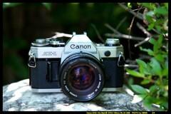 ひんでコレクション Canon AE-1 ②