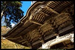 秋の榛名神社にて㉑