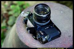 ひんでコレクション Canon EF ③